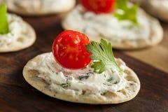 Entremeses de la galleta y del queso Imagen de archivo