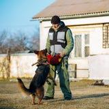 Entrenamiento de Dog del pastor alemán Fotos de archivo libres de regalías