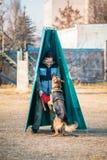 Entrenamiento de Dog del pastor alemán al aire libre Imagen de archivo