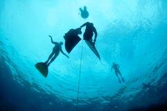Entrenamiento de Freediving con la profundidad del agujero azul Fotografía de archivo libre de regalías