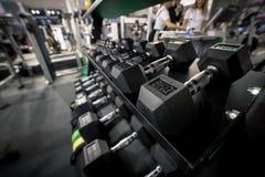 entrenamiento de 6 kilogramos un peso de la mano puesto en estante en gimnasio fotografía de archivo libre de regalías
