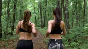 Entrenamiento de la aptitud al aire libre La morenita delgada dos con el pelo largo que corre a través del bosque y comunica almacen de video