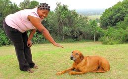 Entrenamiento de la obediencia del perro Imagen de archivo libre de regalías