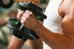 Entrenamiento de la pesa de gimnasia en gimnasia Foto de archivo libre de regalías