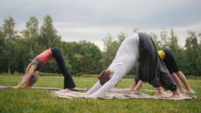 Entrenamiento de la yoga en parque - el grupo de deportistas realiza ejercicio de la flexibilidad almacen de video