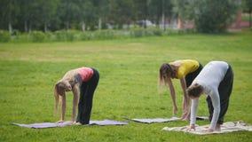 Entrenamiento de la yoga en parque - el grupo de deportistas realiza ejercicio de la flexibilidad metrajes