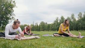Entrenamiento de la yoga en parque - los deportistas jovenes realizan el ejercicio de la flexibilidad al aire libre almacen de metraje de vídeo