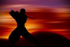 Entrenamiento de los artes marciales Imagenes de archivo