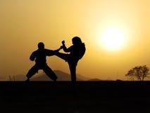 Entrenamiento de los artes marciales de la autodefensa Imágenes de archivo libres de regalías