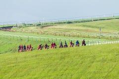 Entrenamiento de los caballos de raza Imagenes de archivo