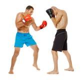 Entrenamiento de los combatientes de Kickbox Fotografía de archivo libre de regalías