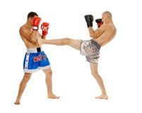 Entrenamiento de los combatientes de Kickbox Fotos de archivo libres de regalías