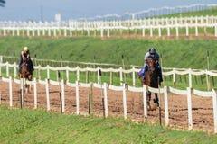 Entrenamiento de los jinetes de los caballos de raza Imágenes de archivo libres de regalías