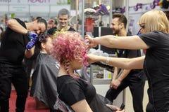 Entrenamiento de los peluqueros para crear hairstyl creativo colorido Imágenes de archivo libres de regalías