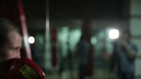 Entrenamiento de un boxeador en el gimnasio almacen de metraje de vídeo