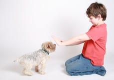Entrenamiento de un perro Imagen de archivo libre de regalías