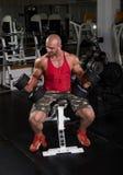 Entrenamiento del bíceps Imagen de archivo