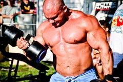 Entrenamiento del Bodybuilder Imagen de archivo libre de regalías