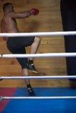 Entrenamiento del boxeador del retroceso en un saco de arena Fotos de archivo