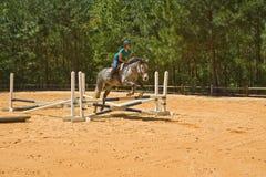 Entrenamiento del caballo y del jinete Fotografía de archivo libre de regalías