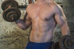 Entrenamiento del cuerpo de Fittnes muscular Imagenes de archivo