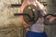 Entrenamiento del cuerpo de Fittnes muscular Foto de archivo libre de regalías