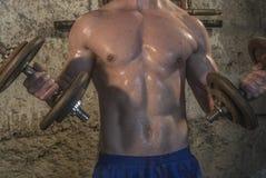 Entrenamiento del cuerpo de Fittnes muscular Fotos de archivo