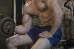 Entrenamiento del cuerpo de Fittnes muscular Fotografía de archivo