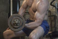 Entrenamiento del cuerpo de Fittnes muscular Fotos de archivo libres de regalías