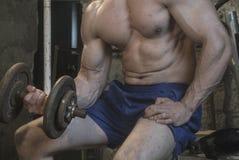 Entrenamiento del cuerpo de Fittnes muscular Foto de archivo