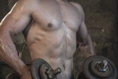 Entrenamiento del cuerpo de Fittnes muscular Imagen de archivo libre de regalías