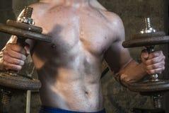 Entrenamiento del cuerpo de Fittnes muscular Fotografía de archivo libre de regalías