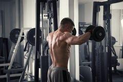 Entrenamiento del culturista con pesas de gimnasia en el gimnasio, cuerpo masculino muscular perfecto Imágenes de archivo libres de regalías