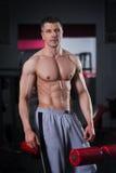 Entrenamiento del culturista en el gimnasio, cuerpo masculino muscular perfecto Fotografía de archivo