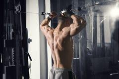 Entrenamiento del culturista en instructor en el gimnasio, cuerpo masculino muscular perfecto Fotos de archivo libres de regalías