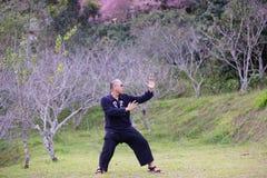 Entrenamiento del kung-fu Imágenes de archivo libres de regalías