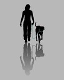 Entrenamiento del perro Fotografía de archivo libre de regalías
