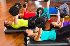 Entrenamiento del peso en el gimnasio con pesas de gimnasia Foto de archivo