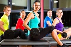 Entrenamiento del peso en el gimnasio con pesas de gimnasia Fotografía de archivo