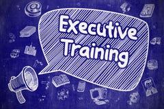 Entrenamiento ejecutivo - ejemplo del garabato en la pizarra azul stock de ilustración