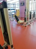 Entrenamiento en la gimnasia fotografía de archivo libre de regalías