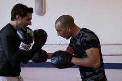 Entrenamiento inglés del boxeo en el gimnasio Fotos de archivo libres de regalías