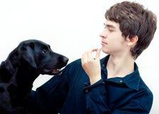 Entrenamiento positivo del perro Imagen de archivo