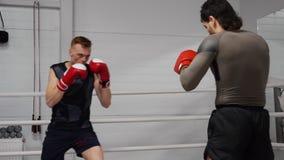 Entrenamiento profesional de dos kickboxers en ringside en club de la lucha metrajes