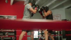 Entrenamiento profesional de dos socios de boxeadores en el anillo, t?cnica de la huelga de la pr?ctica C?mara lenta cámara del m almacen de video