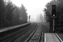 Entrene a las vías en la niebla fotos de archivo libres de regalías