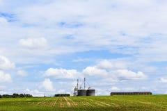 Entrepôt de grain dans la plantation de soja en ciel bleu Le Brésil, Amérique du Sud photos libres de droits
