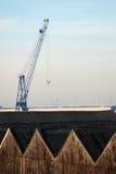 Entrepôts et grue dans le port d'Anvers Image stock