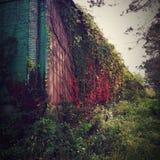 Entrepôt abandonné photographie stock libre de droits