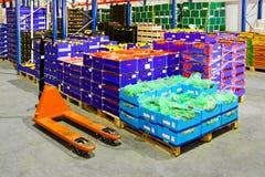 Entrepôt de fruits Photographie stock libre de droits